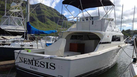 Nemesis Shared Charter