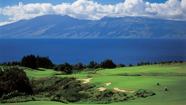 Kapalua Plantation Golf Tee Times