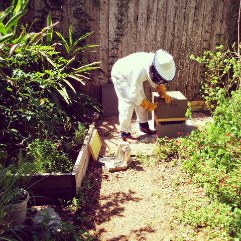 Houston backyard beekeeping classes and services.