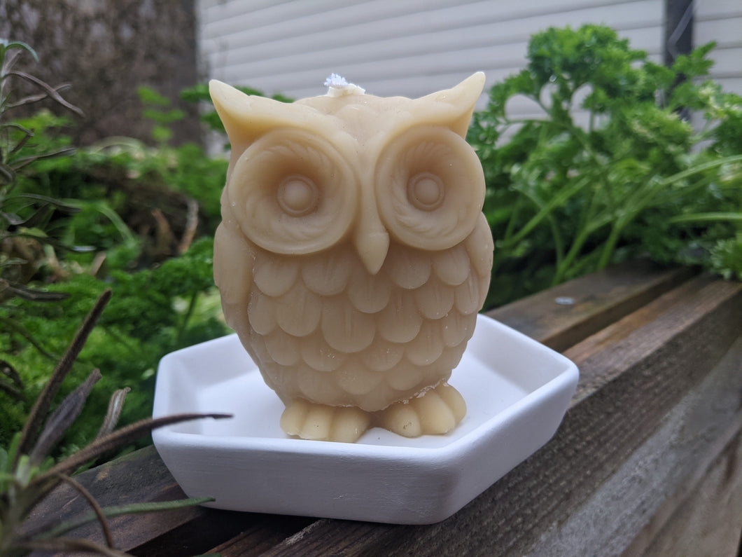 Houston Owl Candle