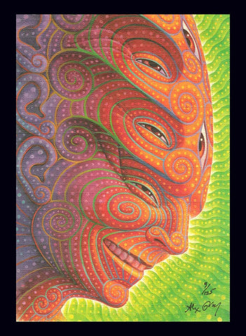 "Alex Grey ""Shpongled"" Blotter Art - Signed and Numbered"