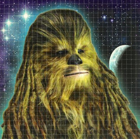 Space Wook Blotter Art - Shakedown Gallery