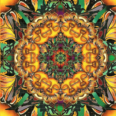 Sleeping Sunflower Blotter Art - Shakedown Gallery