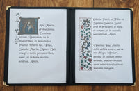 Rosary Prayers in Latin, 8 Page set, Digital File, Printable