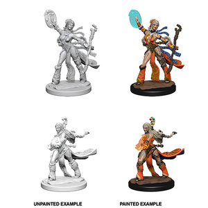 Pathfinder Deep Cuts Unpainted Minis: Human Female Sorcerer - WAVE 1