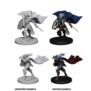 Pathfinder Deep Cuts Unpainted Miniatures: Elf Female Paladin - WAVE 4