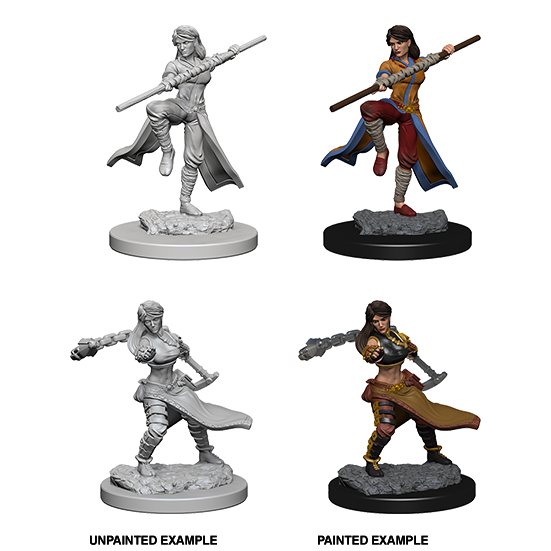 D&D Nolzur's Marvelous Miniatures: Human Monk Female - WAVE 1