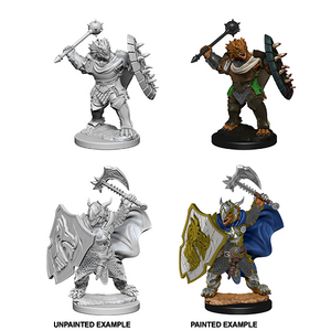 D&D Nolzur's Marvelous Miniatures: Dragonborn Paladin Male - WAVE 4
