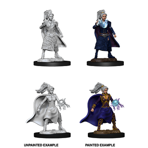 D&D Nolzur's Marvelous Miniatures: Human Sorcerer Female - WAVE 10