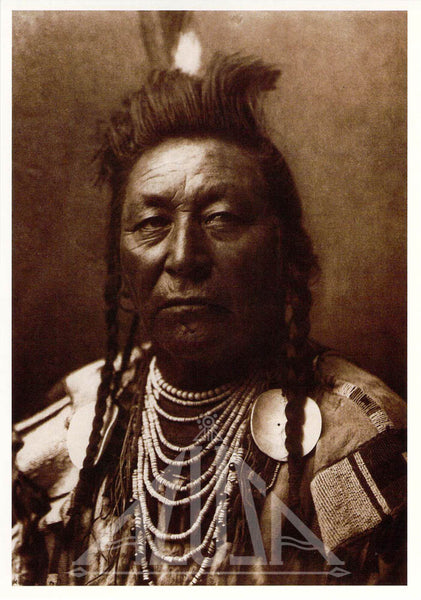 *SET-3 The Plains Collection by Edward Curtis - 47 Post Cards