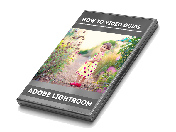 The Beginner's Guide to Using Lightroom - Lightroom 3 [VIDEO TUTORIAL]