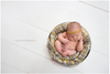 Amy Cook Photography Newborn Videos and E-Workbook