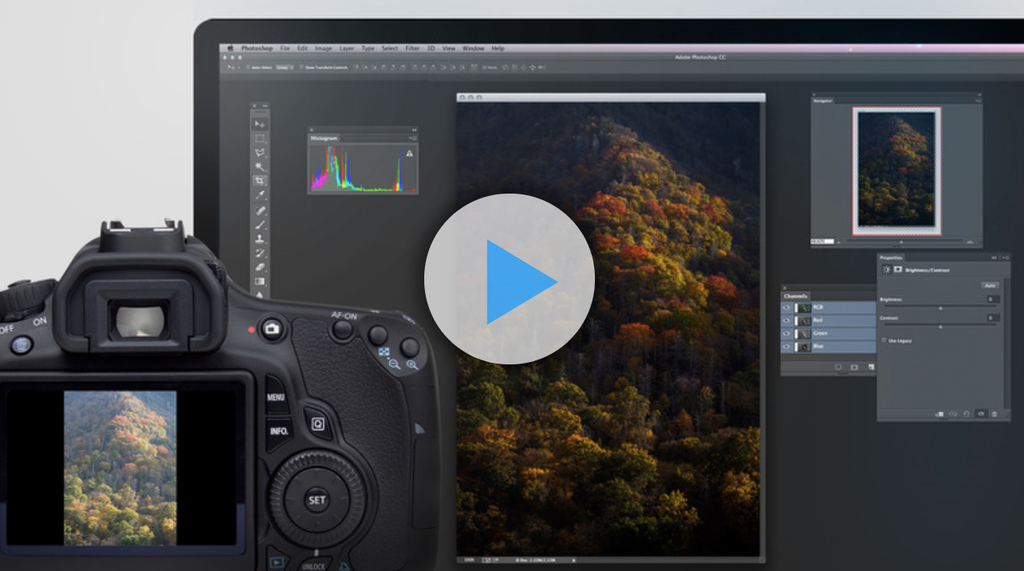 Photoshop for Photographers: Beyond the Basics