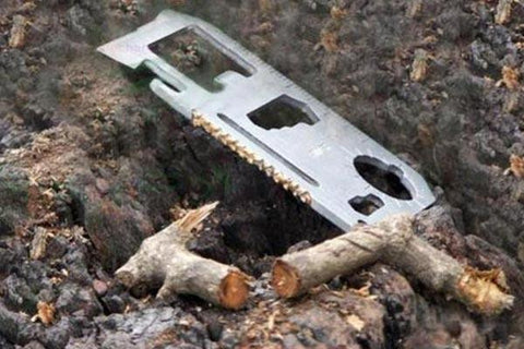 card-sized multi-tool next to cut tree branch