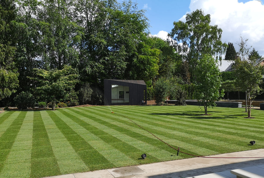 Creating a Striped Lawn