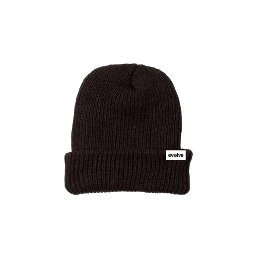 Load image into Gallery viewer, EVOLVE Classic Beanie