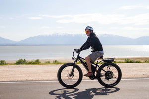 Laden Sie das Bild in den Galerie-Viewer, Bike Rental – Fat Tire Bike