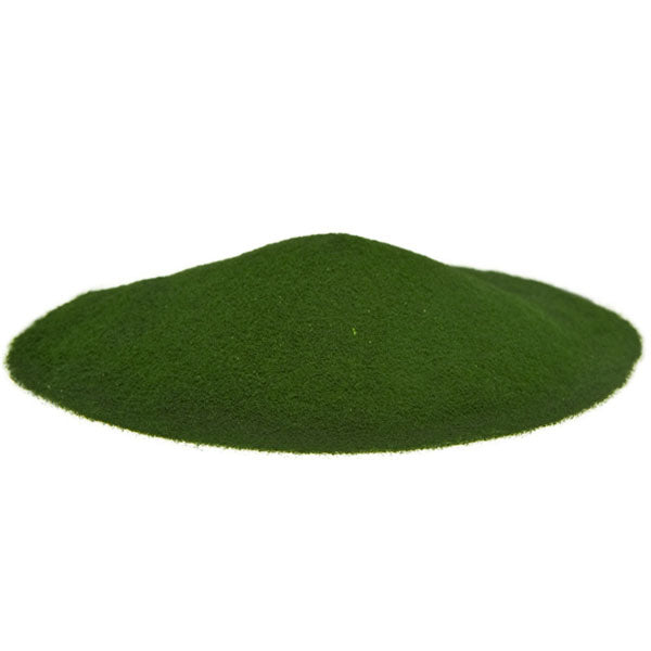 Organic Chlorella Powder | Raw Living UK | Super Foods