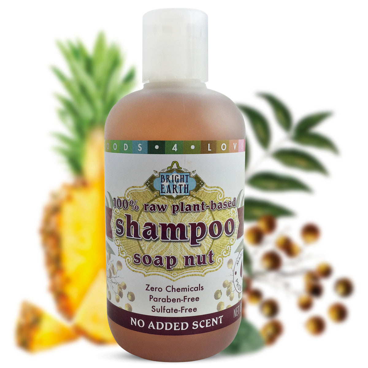 Soap Nut Shampoo - Raw, Plant Based, Vegan (9oz)