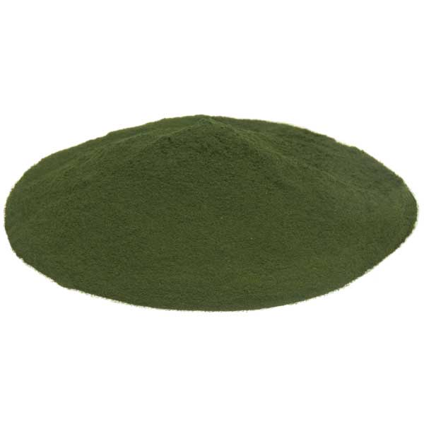spirulina powder organic | Raw Living | raw powder | spirulina supplements