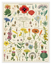 Load image into Gallery viewer, Wildflowers Puzzle (1000pc)