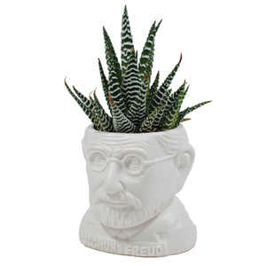 Fertile Minds Planters - Unemployed Philosophers