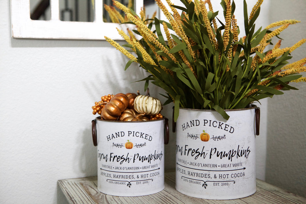 Farm Fresh Pumpkin Metal Bucket Set