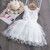 Assorted Mesh Casual Lace Embroidery Summer Dresses