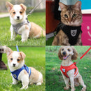 Adjustable Harness Cat Dog Vest Lead Strap-Dagoodi