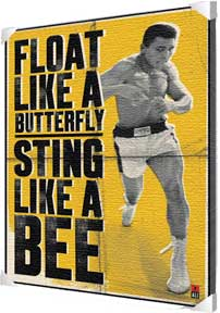 Float Like A Butterfly Canvas