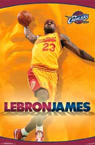 Lebron James - 2014 22In X 34In Poster