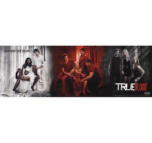 True Blood 12In X 36In Slim Poster
