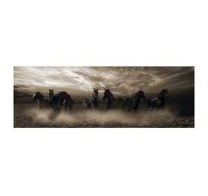 Wild Stampede 12In X 36In Slim Poster