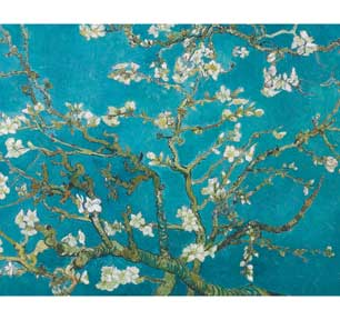 Van Gogh - Almond Blossoms 16In X 20In Mini Poster