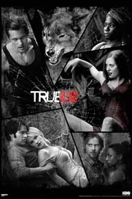 True Blood - Shattered Mirror 24In X 36In Poster