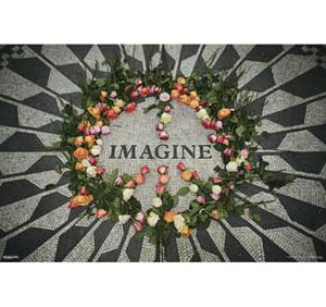 Imagine 24In X 36In Poster