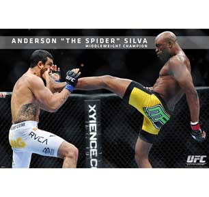 Ufc - Anderson Silva 24In X 36In Poster
