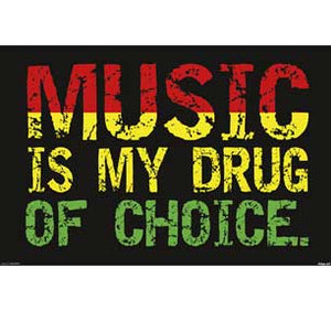 Steez - Music Is My Drug 24In X 36In Poster