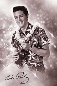 Elvis - Blue Hawaii 24In X 36In Poster