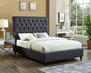 IF 5760-Q Charcoal Fabric Bed with Nailhead Details [NEW]