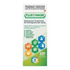 FLIXONASE Nasal Spray 120D Box