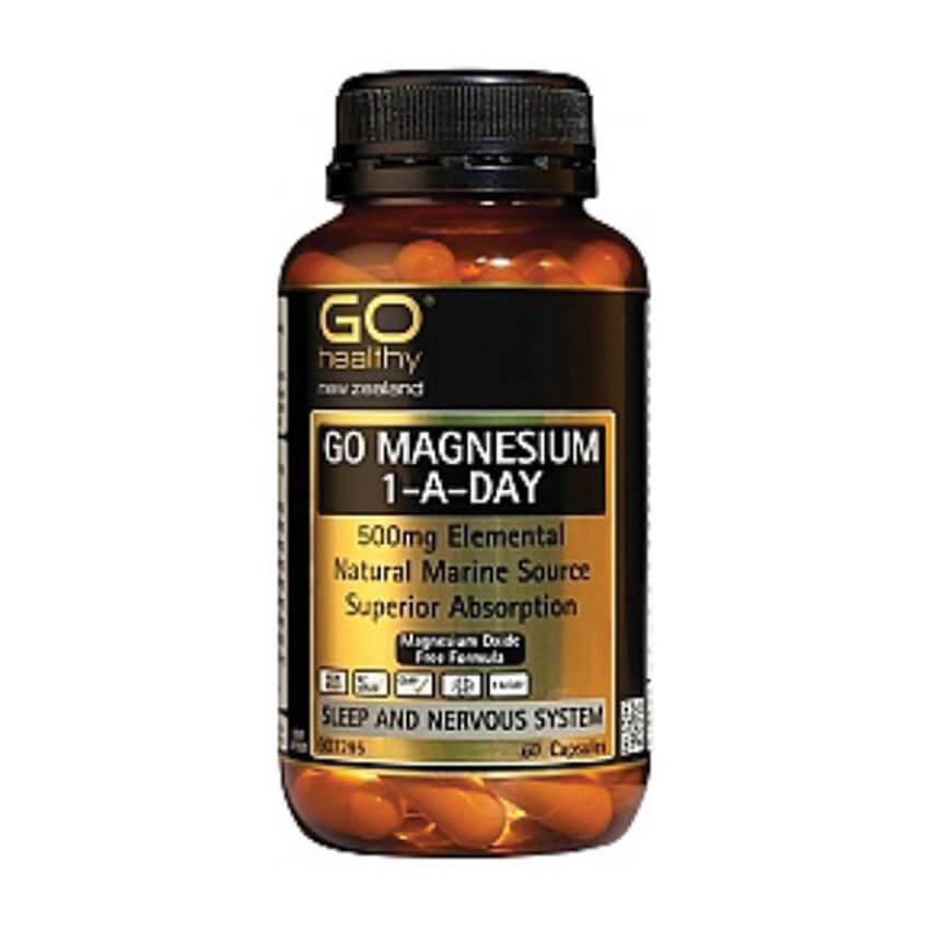 GO Magnesium 1aDay 500mg 60