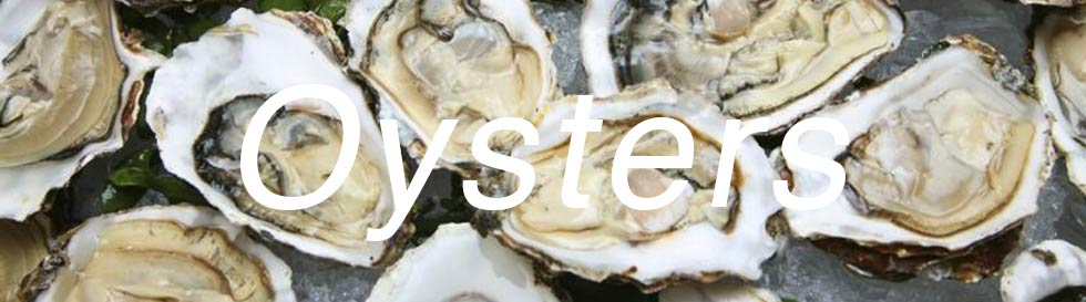Oysters | Foods that boost libido