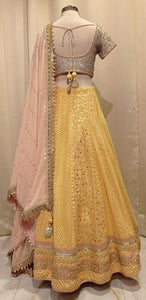 Yellow skirt Georgette with lakhnavi embroidery