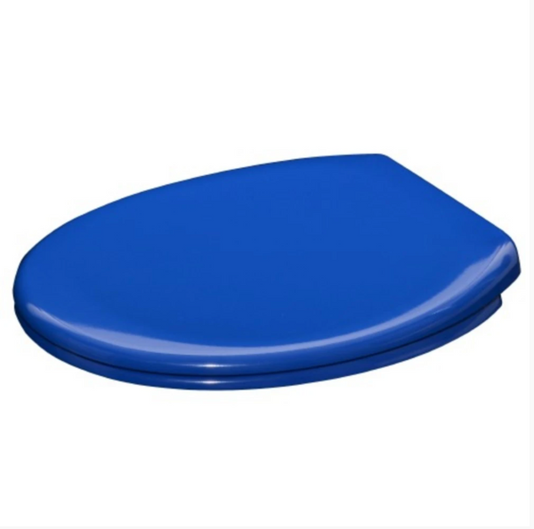 BetterLiving Coloured Assistance Toilet Seat