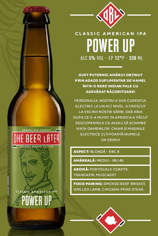 Bere artizanala Power Up One Beer Later 330ml