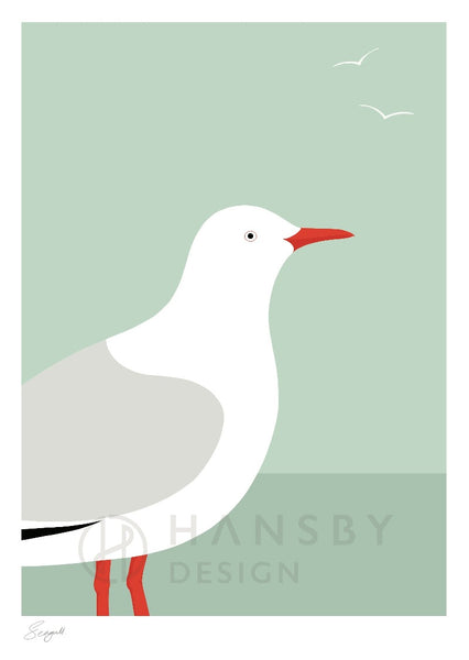 The Fantail House, NZ Made,  Cathy Hansby, Contemporary Art Prints, Seabirds, Seagull