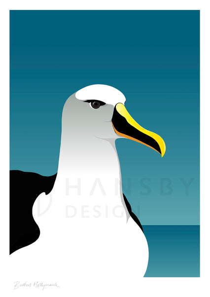 The Fantail House, NZ Made,  Cathy Hansby, Contemporary Art Prints, Seabirds, Mollymawk Albatross