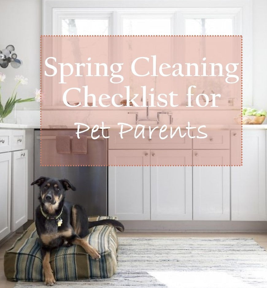 Spring Cleaning Checklist for Pet Parents