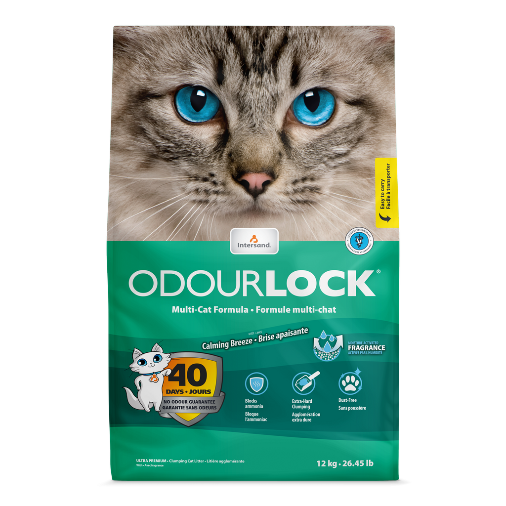 Intersand ODOURLOCK ULTRA PREMIUM Cat Litter 12kg (Scented)